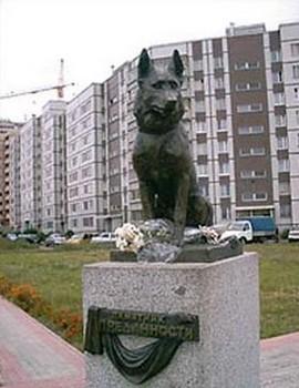 Памятник собаке тольятти видео надгробные памятники надгробные фото и цены щенки