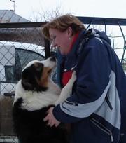 Стрижка для собак оренбург